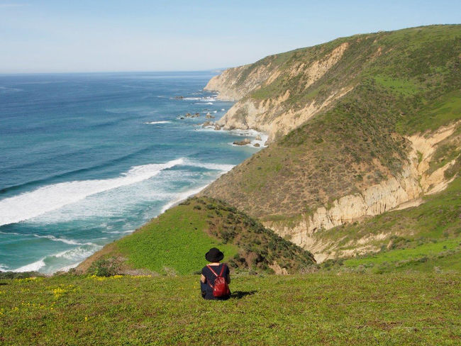Tomales_Point_Trail